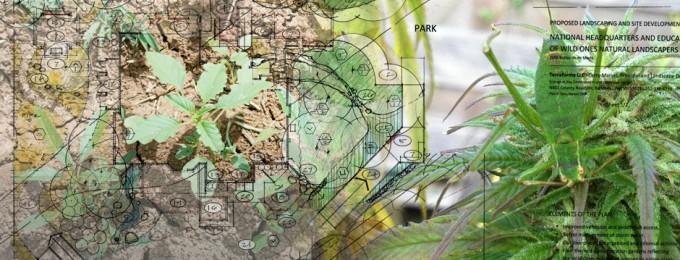 Landscaping_compilatie