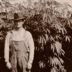 HIstory_of_hemp_online