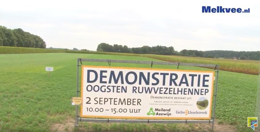 Ruwvoerteelt Oost-Nederland