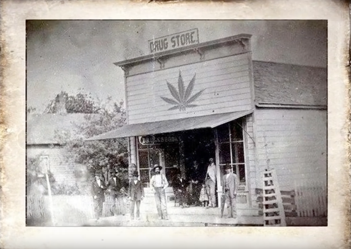 drugstore_cannabis